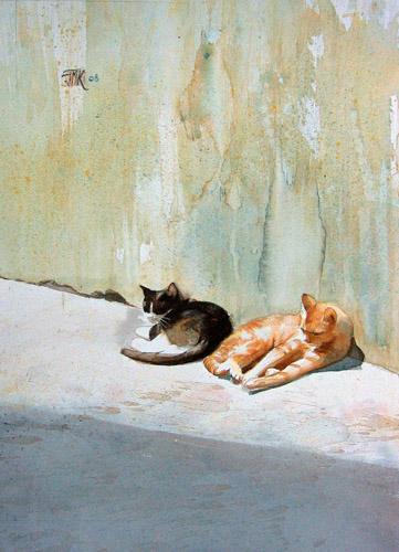 Pan de mur au soleil, 2 chats