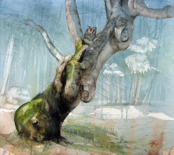 Le hêtre au hibou