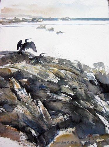Rochers et cormorans