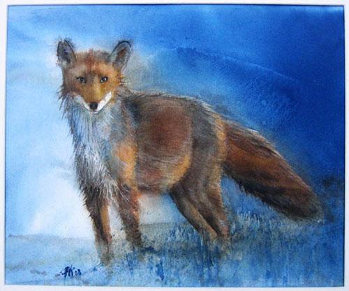 L'heure bleue, renard mouillé