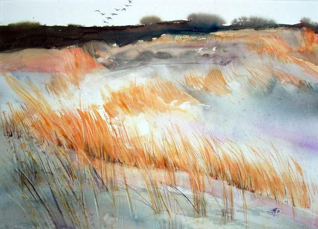 La dune aux loups